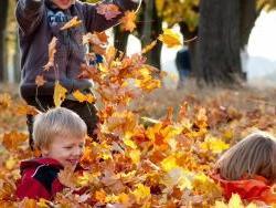 Вниманию родителей: о детской безопасности осенью